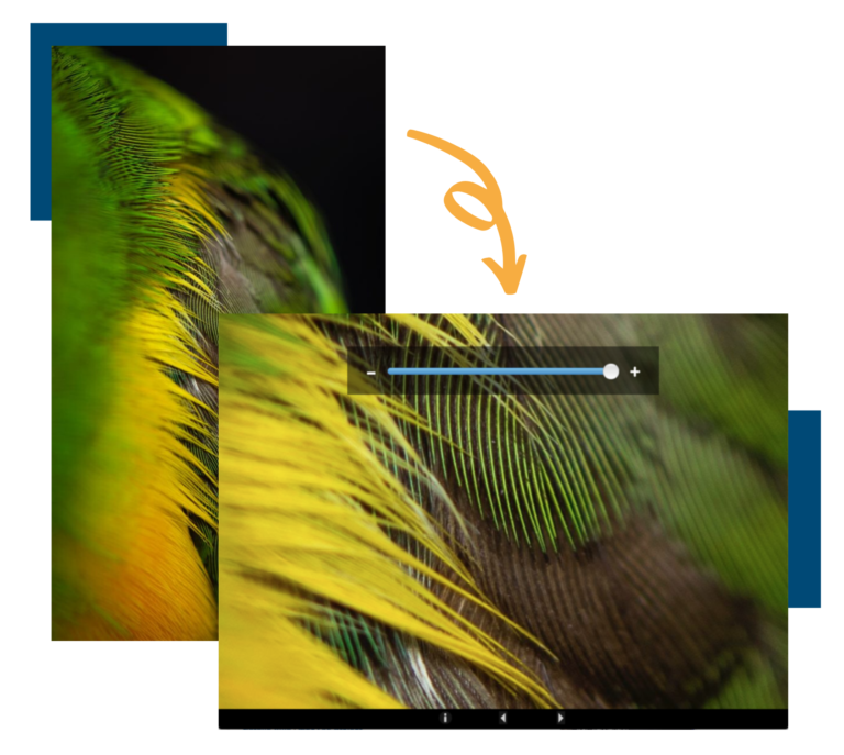 An image showing what it looks like before and after a juror zooms in on an image.